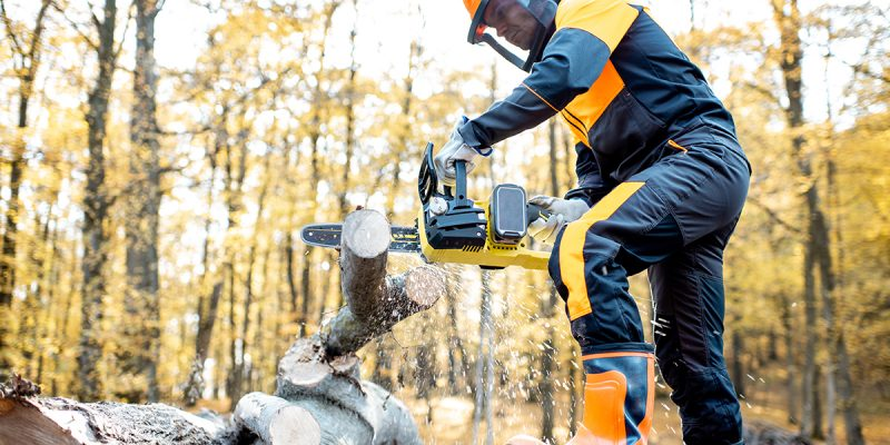 Man with chainsaw and safety equipment